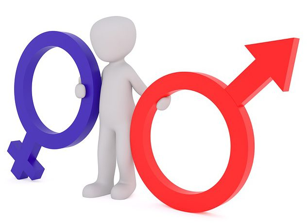 How to find the gender of things in French?